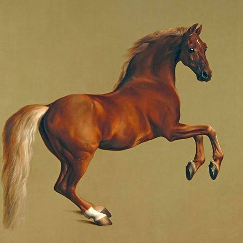 cuadros-de-fauna - Cuadro -Whistlejacket- (caballos) - Stubbs, George