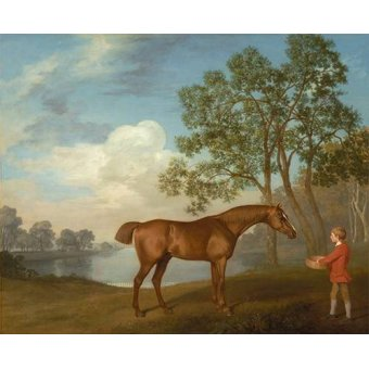cuadros de fauna - Cuadro -Pumpkin with a Stable-lad- (caballos) - Stubbs, George