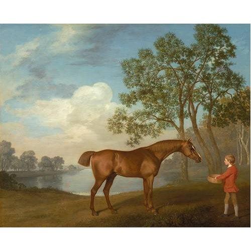 cuadros de fauna - Cuadro -Pumpkin with a Stable-lad- (caballos)