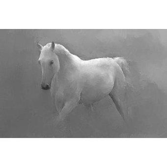 - Cuadro -Caballo blanco- - _Anónimo Español