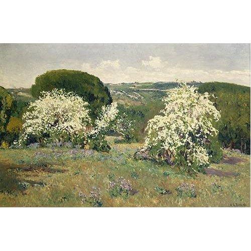 cuadros de paisajes - Cuadro -Espinos en flor-