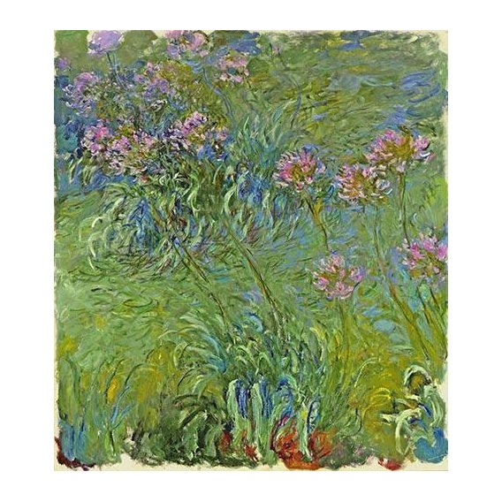 cuadros de flores - Cuadro -Flores de agapantus, 1914-