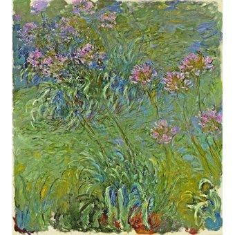 cuadros de flores - Cuadro -Flores de agapantus, 1914- - Monet, Claude