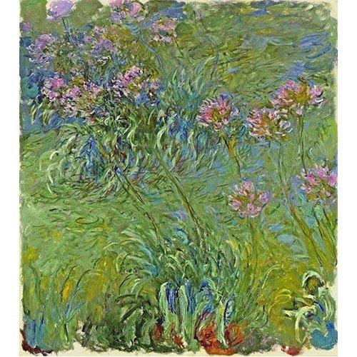 Cuadro -Flores de agapantus, 1914-