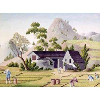 cuadros etnicos y oriente - Cuadro -Campesinos en los arrozales- - _Anónimo Chino
