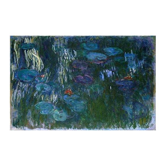cuadros de paisajes - Cuadro -Water Lilies (2)-