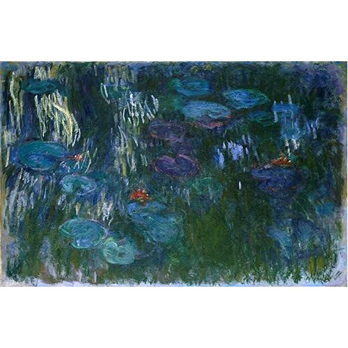 Cuadro -Water Lilies (2)-