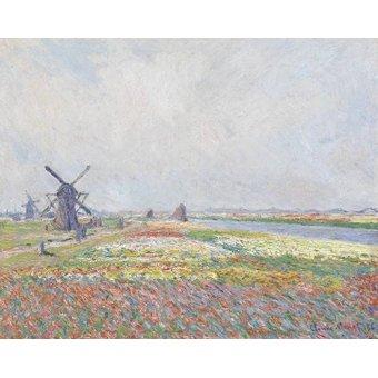 Cuadro -Tulip Fields near The Hague, 1886- - Monet, Claude