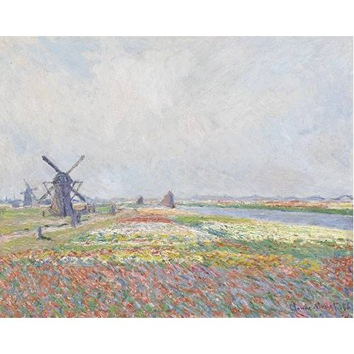 Cuadro -Tulip Fields near The Hague, 1886-