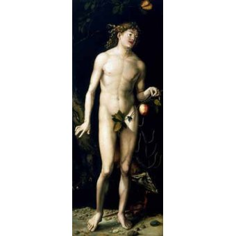 cuadros de retrato - Cuadro -Adán- - Dürer, Albrecht (Albert Durer)