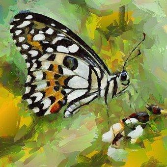 cuadros de fauna - Cuadro -Moderno CM6781- - Medeiros, Celito