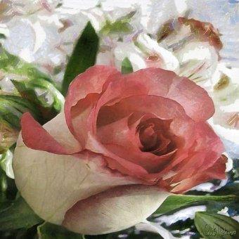 cuadros de flores - Cuadro -Moderno CM10484- - Medeiros, Celito