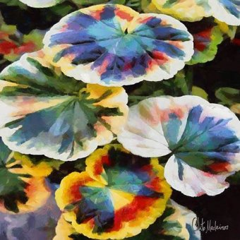cuadros de flores - Cuadro -Moderno CM13198- - Medeiros, Celito
