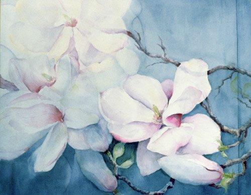 cuadros-de-flores - Cuadro -Magnolia Soulangeana (horizl)- - Armitage, Karen