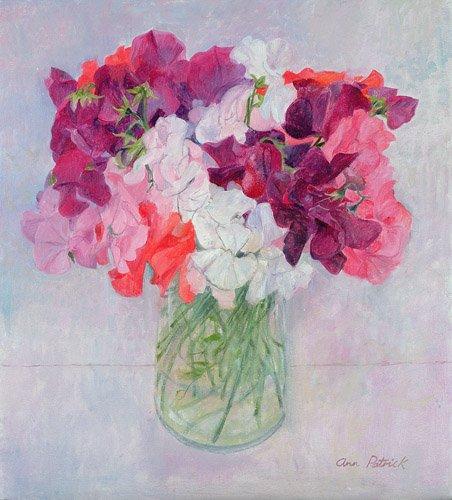 cuadros-de-flores - Cuadro -Sweet Peas, 1999- - Patrick, Ann