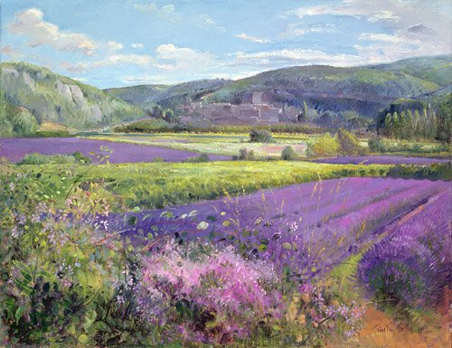 cuadros-para-salon - Cuadro -Lavender Fields in Old Provence - - Easton, Timothy