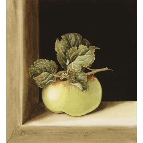 Cuadro -Apple (w.c on paper) -