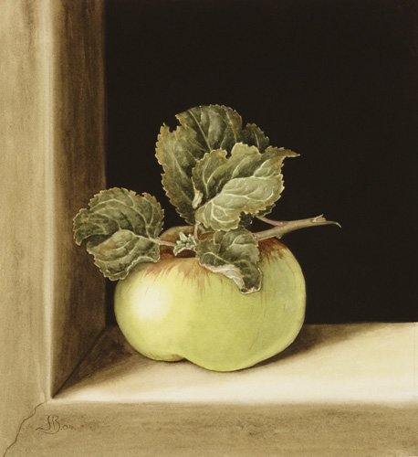 cuadros-de-bodegones - Cuadro -Apple (w.c on paper) - - Barron, Jenny