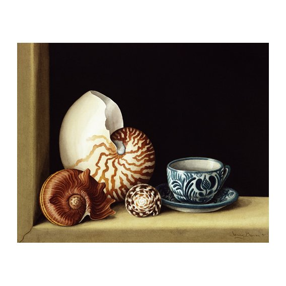 Cuadro -Still life with Nautilus, 1998 (w.c on paper)-