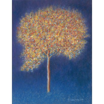 cuadros abstractos - Cuadro -Tree in Blossom- - Davidson, Peter
