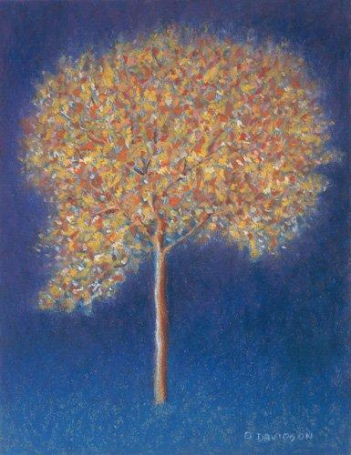 cuadros-modernos - Cuadro -Tree in Blossom- - Davidson, Peter