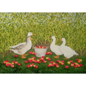- Cuadro -Sweetcorn-Geese- - Ditz