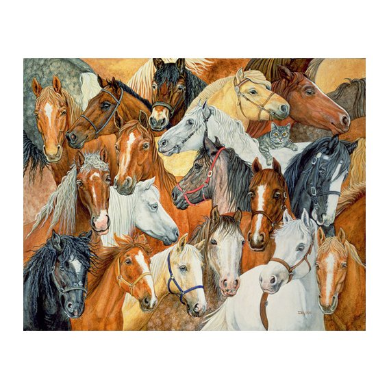 Cuadro -Dee's Horse-Blanket-