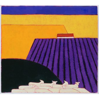 cuadros de paisajes - Cuadro -Sheep and Lavender Fields, 2004- - Donne, Eithne