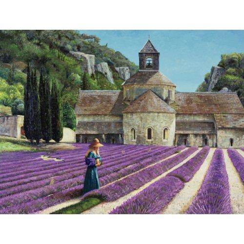 Cuadro - Lavender Picker, Abbaye Senanque, Provence -