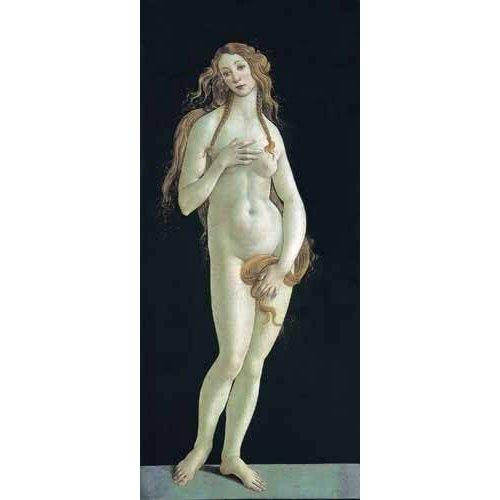 Cuadro -Venus-