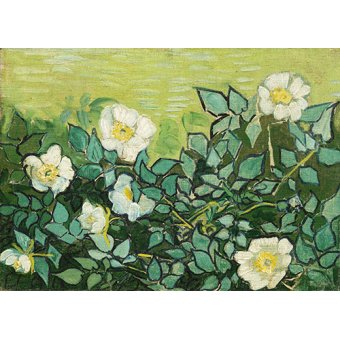 - Cuadro -Roses sauvages- - Van Gogh, Vincent