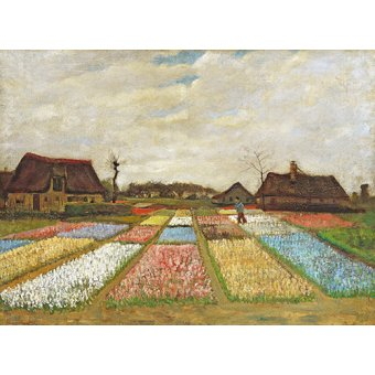 - Cuadro -Parterres de fleurs en Hollande, 1883- - Van Gogh, Vincent