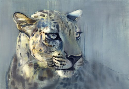 cuadros-para-salon - Cuadro-Predator II (Arabian Leopard), 2009 (oil on paper)- - Adlington, Mark
