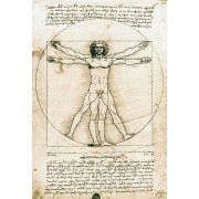 Cuadro -Hombre de Vitruvio- ó -Estudio anatómico-