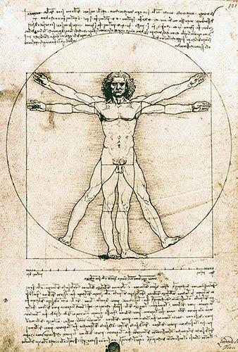 cuadros-de-mapas-grabados-y-acuarelas - Cuadro -Hombre de Vitruvio- ó -Estudio anatómico- - Vinci, Leonardo da