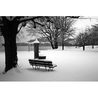 Cuadro - New York -1- - Naturaleza, Fotografia de