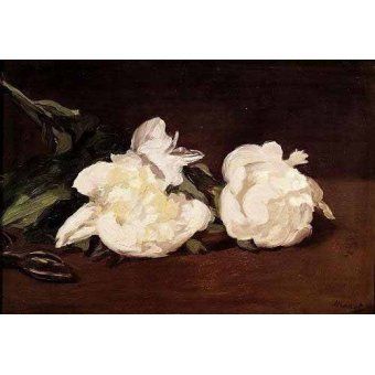 cuadros de flores - Cuadro -Rama de peonías blancas y podadera- - Manet, Eduard