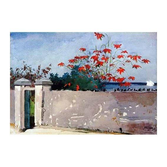 cuadros de mapas, grabados y acuarelas - Cuadro -Un Muro, Nassau-
