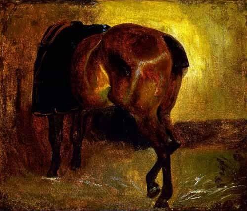 cuadros-de-fauna - Cuadro -Estudio de un caballo- - Gericault, Theodore