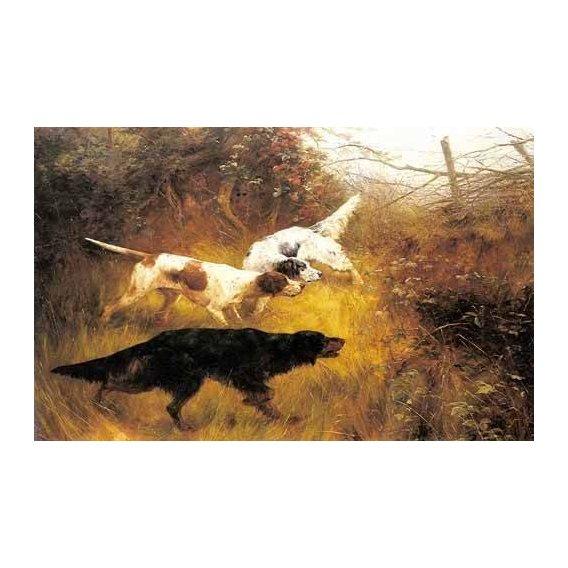 cuadros de fauna - Cuadro -Three Pointers in a Landscape-