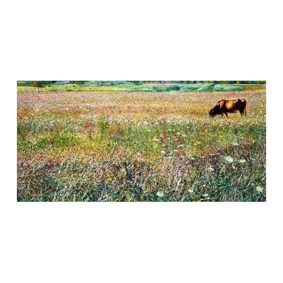 cuadros de paisajes - Cuadro -Roman countryside-