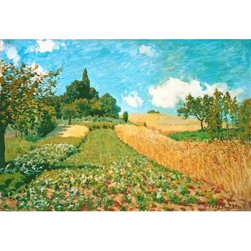 cuadros de paisajes - Cuadro -Campo de trigo-