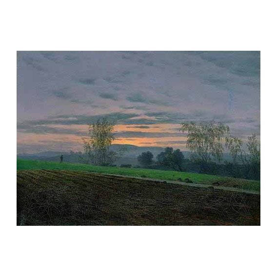 cuadros de paisajes - Cuadro -Campos arados-