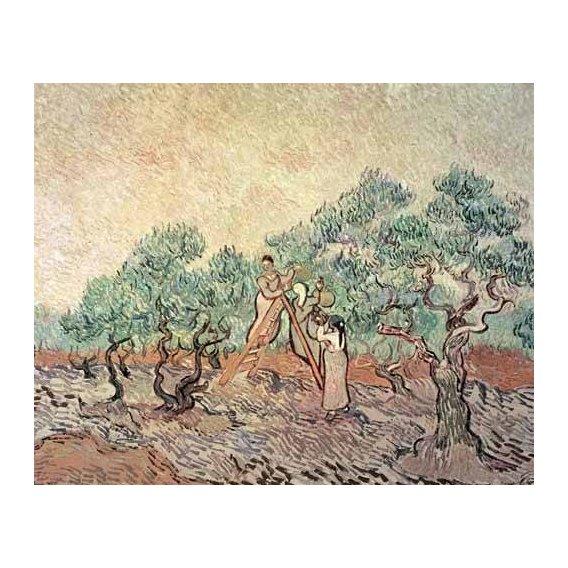 cuadros de paisajes - Cuadro -El Olivar-