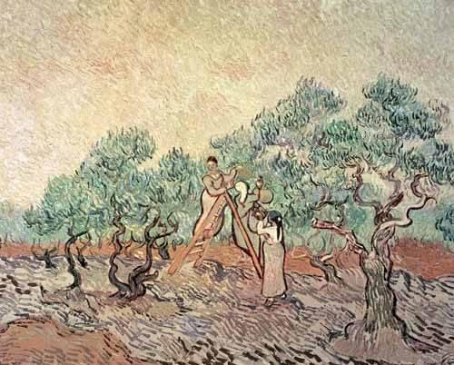 cuadros-de-paisajes - Cuadro -El Olivar- - Van Gogh, Vincent